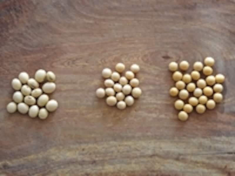 3種類の大豆