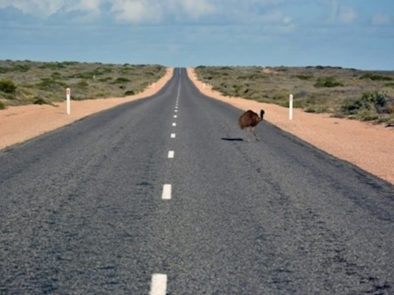 """""""大陸""""を感じる、まっすぐな道"""