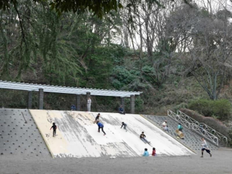 上の池のほとりにあるジャンボすべり台(2017年3月11日撮影)