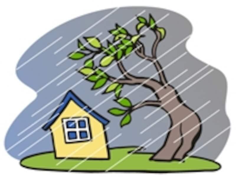 台風の翌日になると、屋根板金が飛んだ!という依頼も。