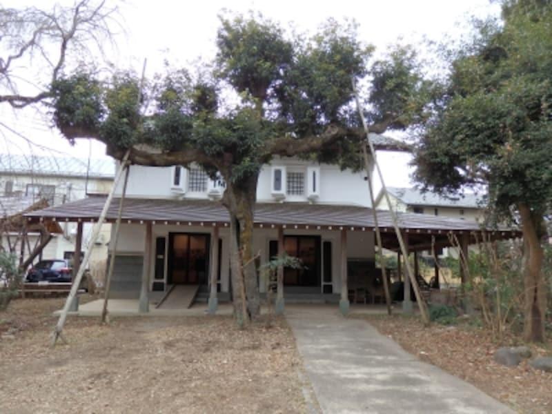 「クロスケの家」の蔵