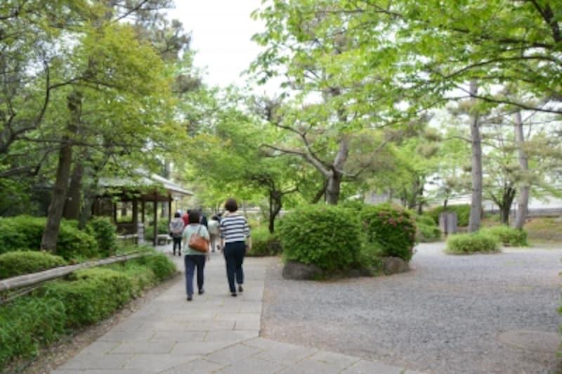緑豊かな忍城の中庭
