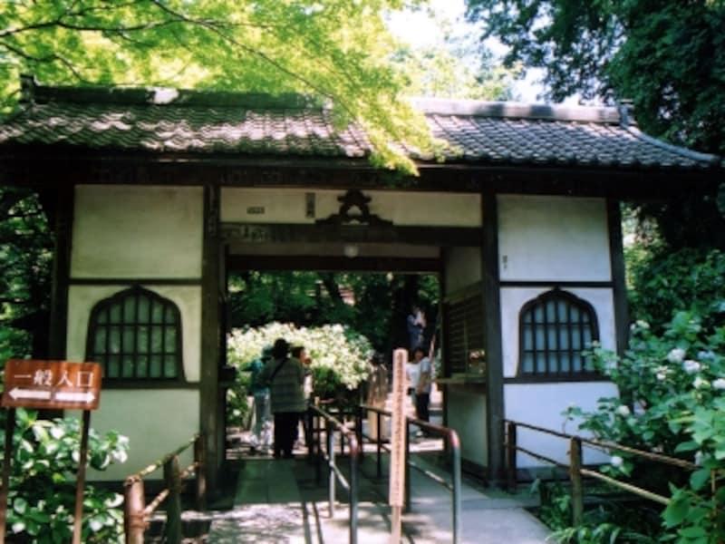 明月院の門