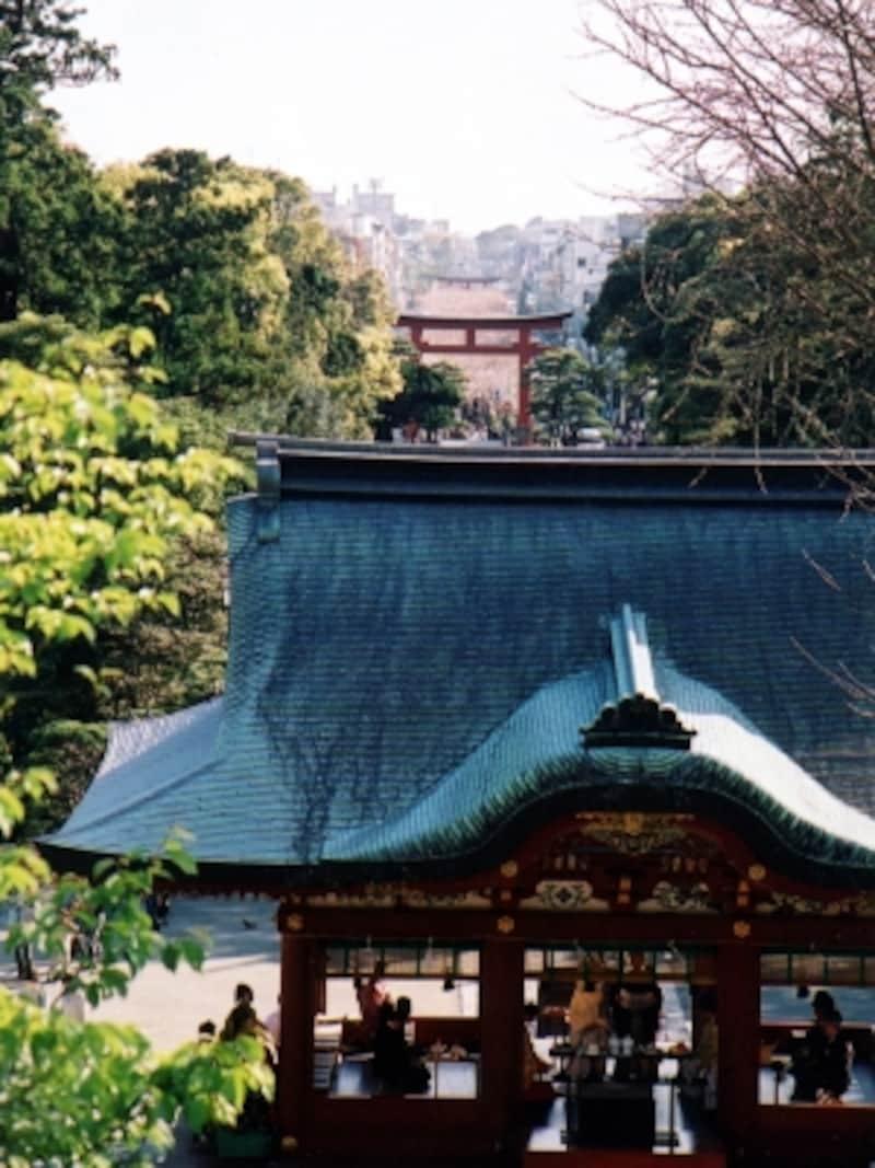 鶴岡八幡宮から望む若宮大路、鎌倉のまちなみ
