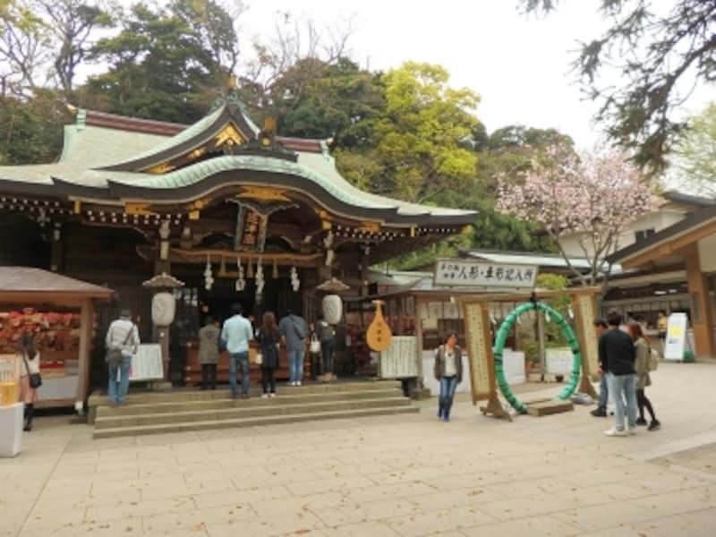 江島神社では茅の輪くぐりをしてからお参りを