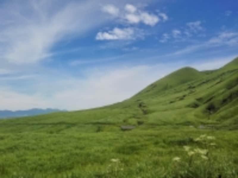 福岡県の青空と草原