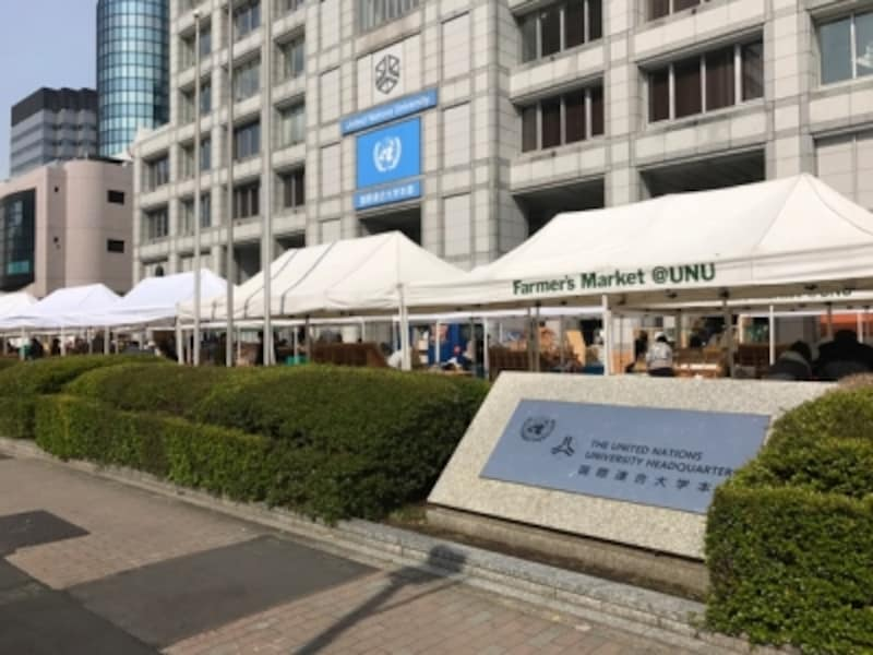 東京で人気のマルシェのひとつ「青山ファーマーズマーケット」です