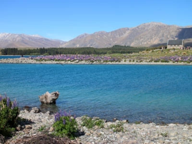 ニュージーランドパッケージツアーにもよく組み込まれている人気のテカポ湖