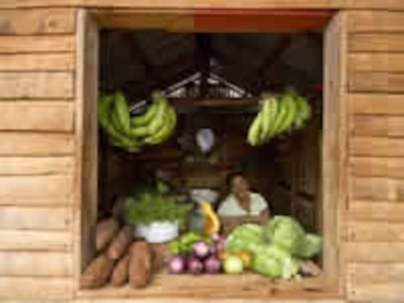 バナナやイモが並ぶ村のマーケット(C)DominicanRepublicMinistryofTouris