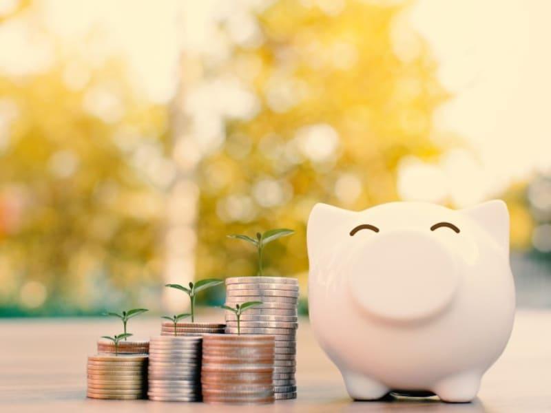 すぐに1000万円の貯金を作るのは難しいけど、いつかは達成したい!