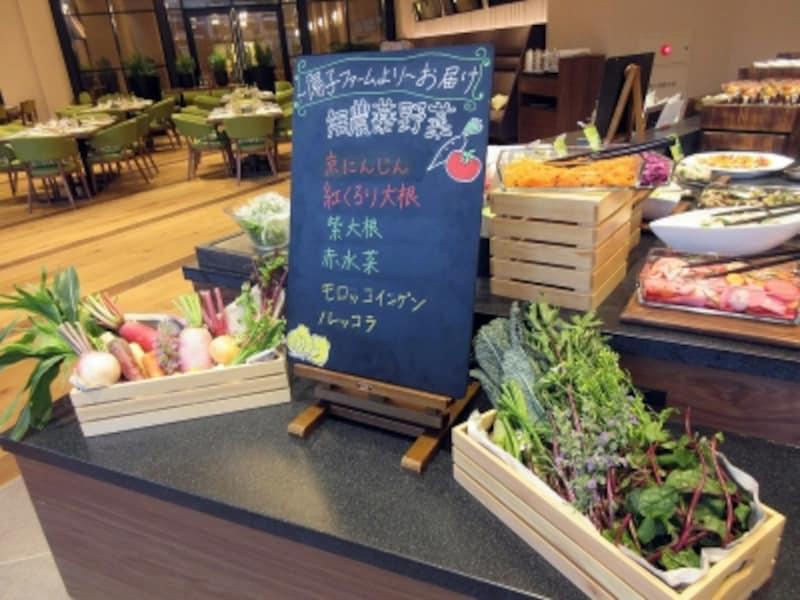 陽子ファームよりお届け無農薬野菜