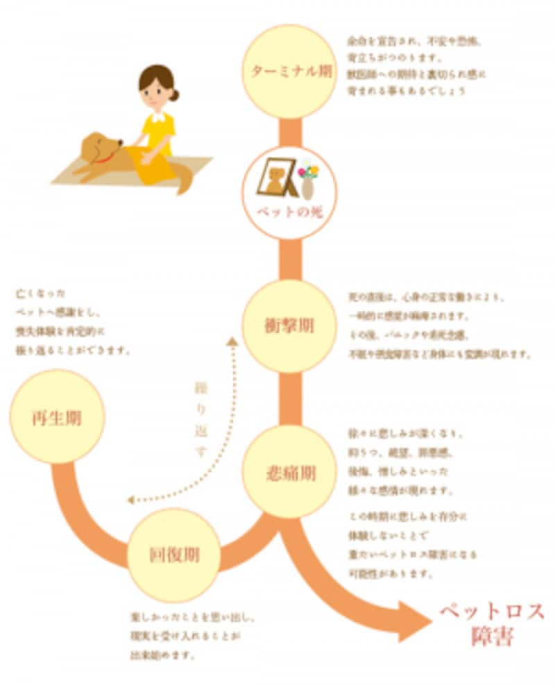 ペットロスプロセス解説画像