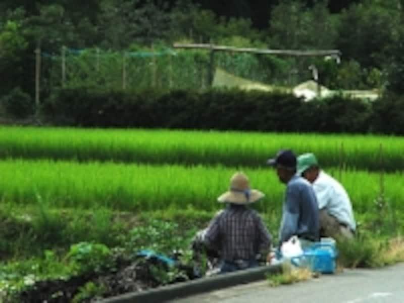 主体は農業でも自分らしい暮らしはそ尊重したい
