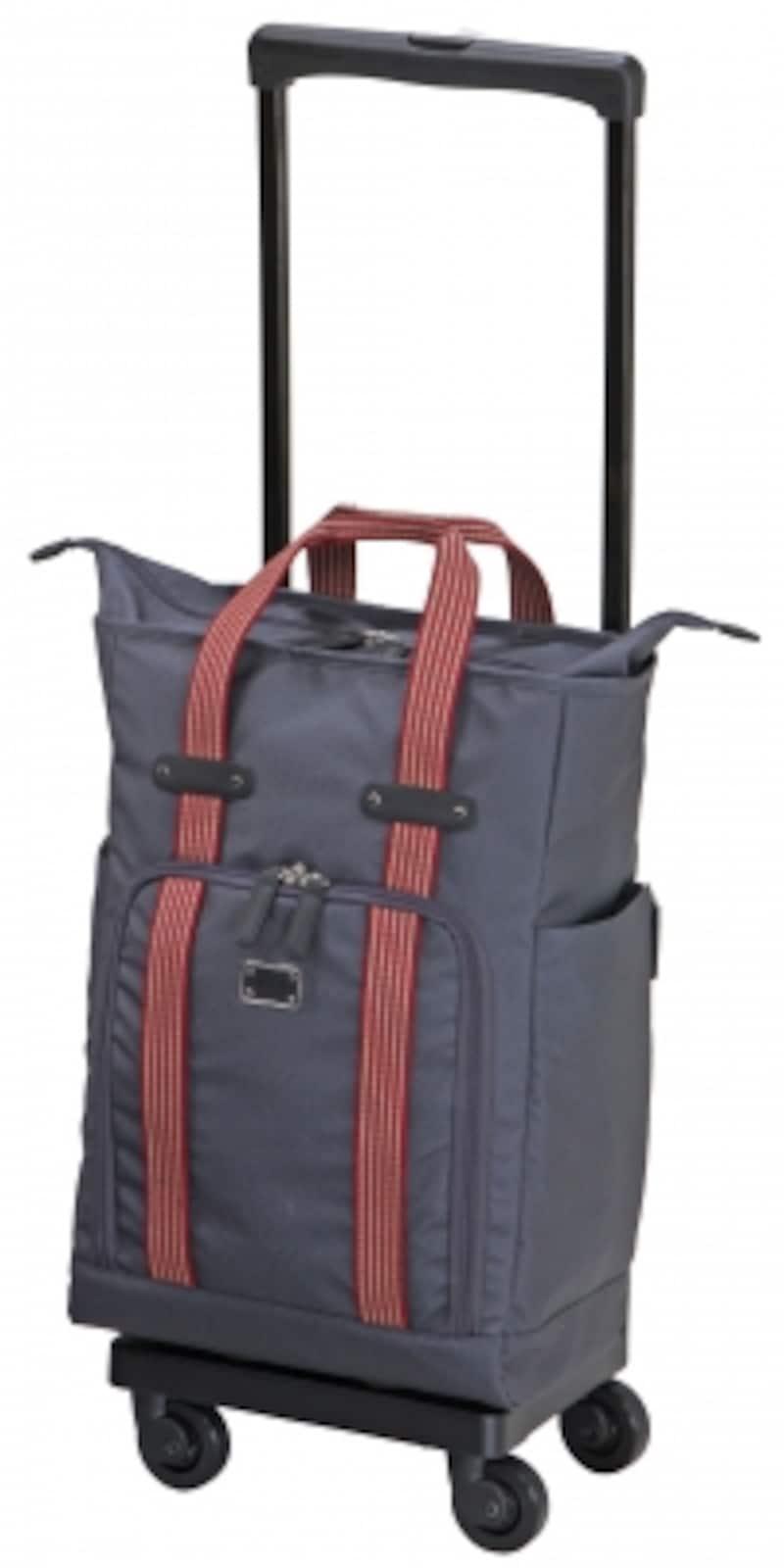 スワニーのキャリーバッグ
