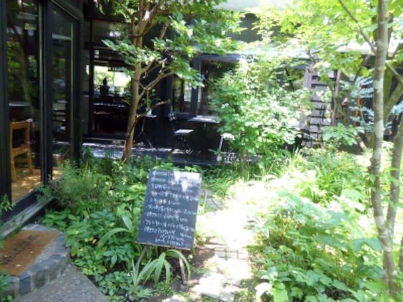 ナチュラルな緑に包まれたカフェkaeruのお庭