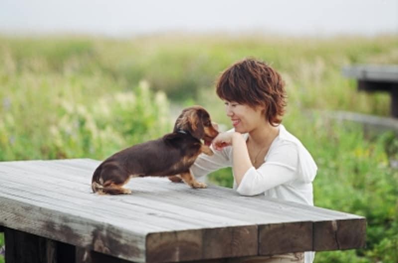 愛犬との散歩は掛替えのない豊かな時間