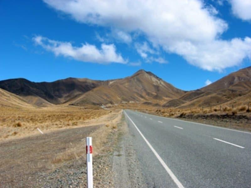 ニュージーランドの大自然をその場でシェアしたい!