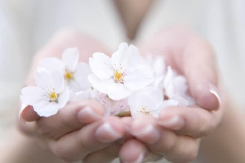 手のひらいっぱいの花