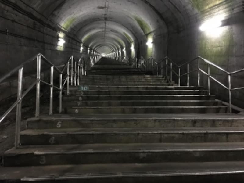 数字が刻まれた462段の階段