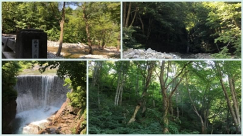 「西黒沢橋の奥に見える小さな滝」、「まるでジブリの世界のような林」、「湯檜曽川にかかる土合橋をのぞくと滝壺にラフティングを楽しむ観光客」、「川ととても距離が近い西黒沢橋」