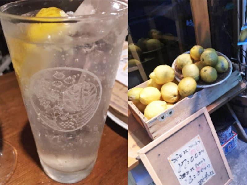 レモンサワーのブーム到来!恵比寿の人気3店をはしご酒