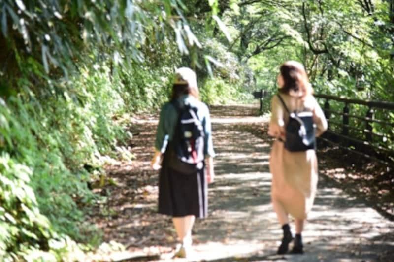 森林浴を楽しみながら、のんびり歩くことに