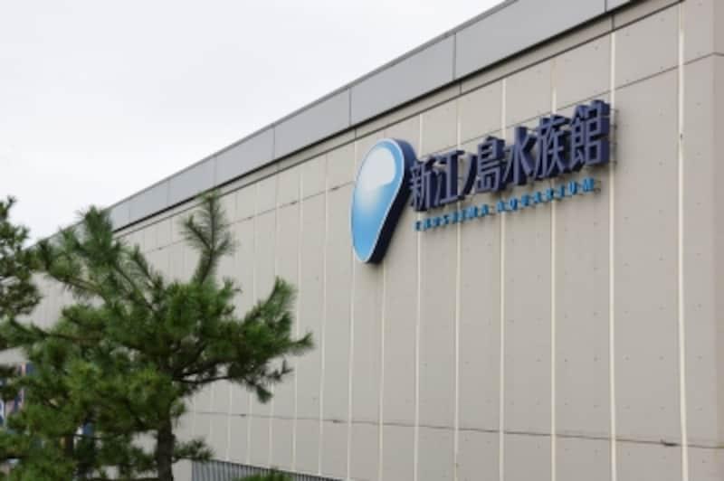 新江ノ島水族館(えのすい)