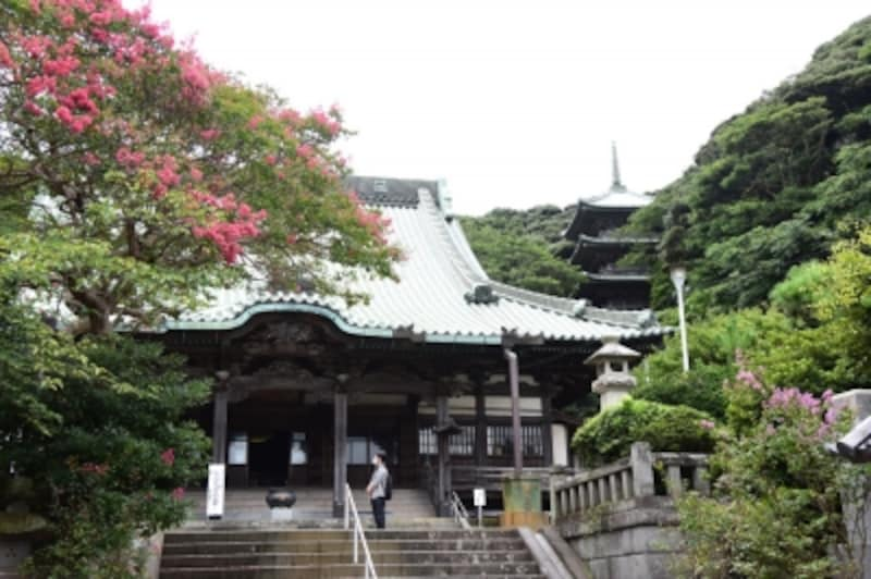 龍口寺本堂と五重塔