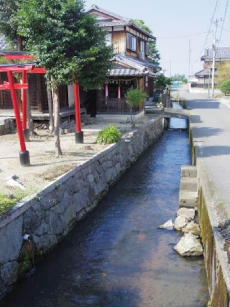 伊庭町の水路