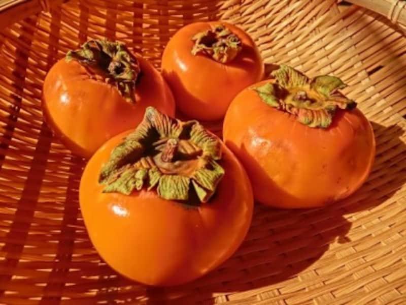 柿,英語,柿英語,柿を英語で,かき,カキ,果物の柿,英語で,干し柿,英語で言うと,秋の味覚,英会話,日本,日本料理,おもてなし