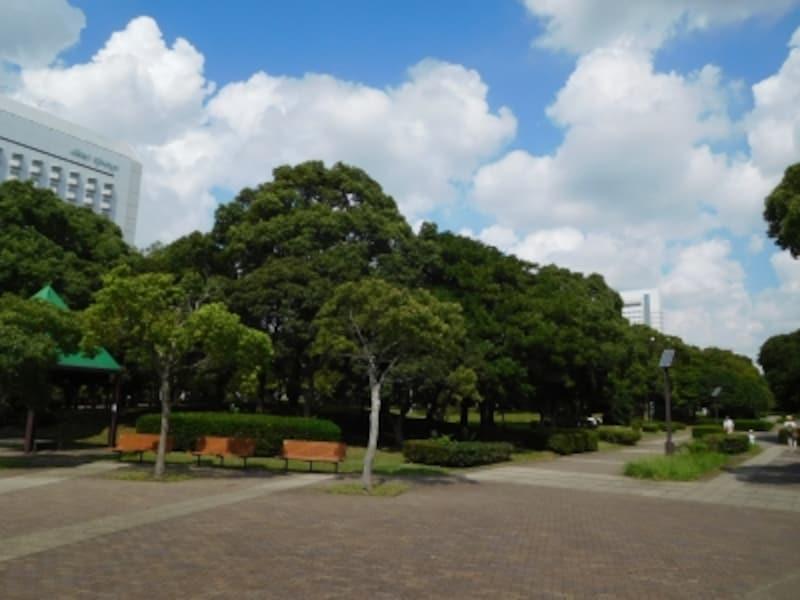 幕張新都心の公園緑地地区