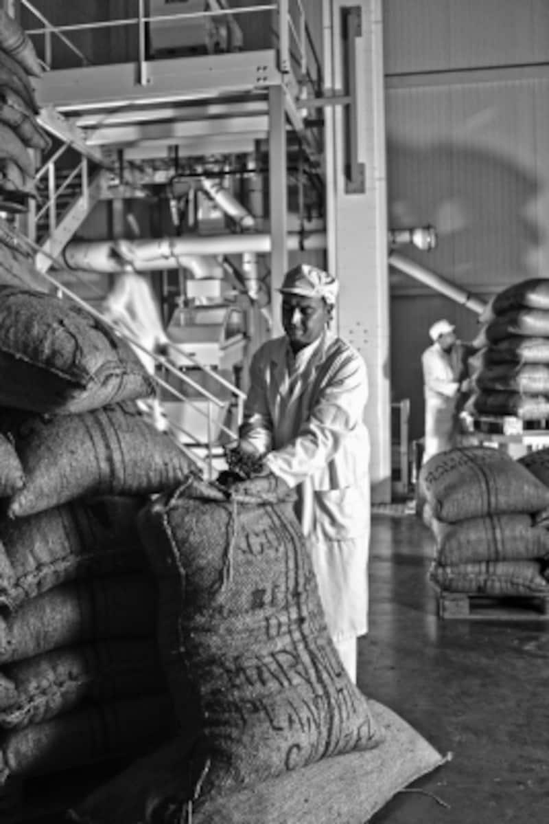 契約農園から届いたカカオ豆からチョコレートが作られます