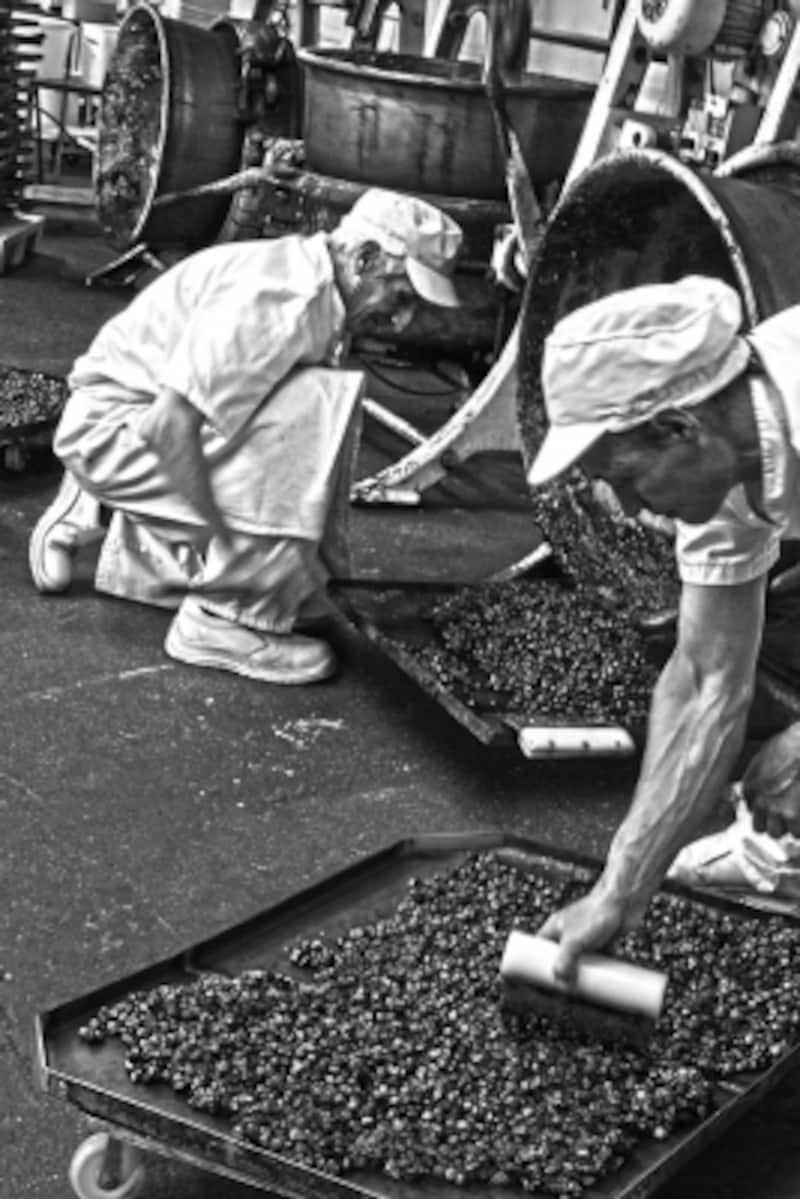 プラリネを作るのは熟練の職人の仕事