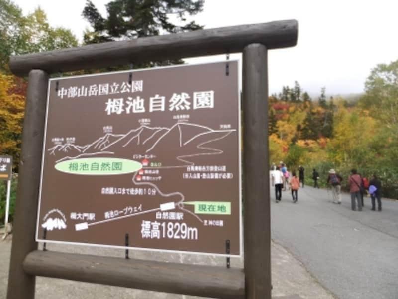 栂池自然園への道案内