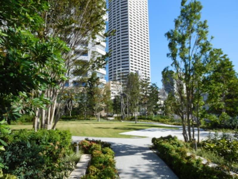 「ザ・パークハウス西新宿タワー60」の外観