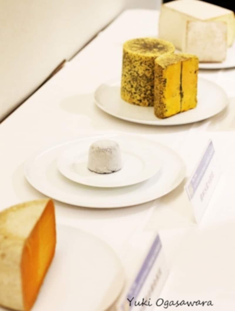 AllJapanナチュラルチーズコンテスト2017受賞チーズたち