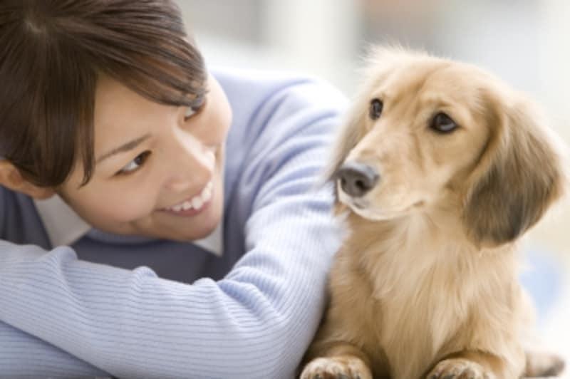 家族だからこそ愛犬のきもちが知りたい!