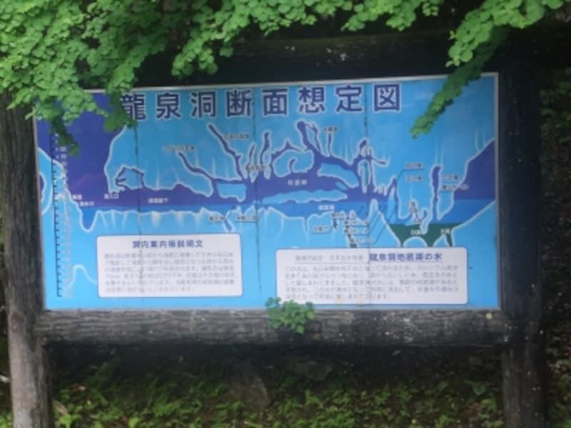 龍泉洞(2)/断面想定図