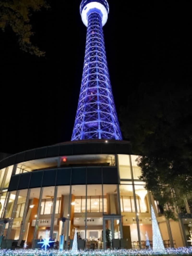 横浜マリンタワーでは流れ星のように下に光が落ちる「スターダストイルミネーション」が点灯(2017年11月24日撮影)