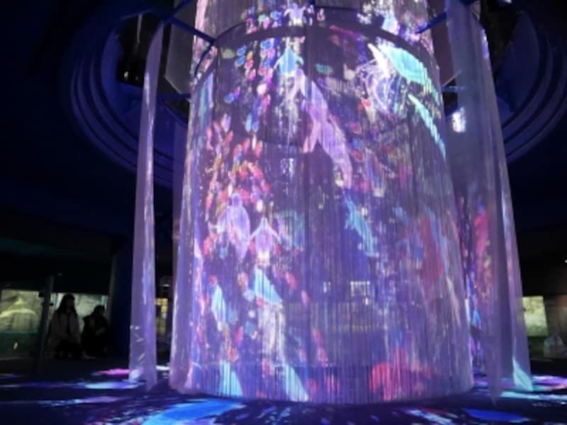 水族館「アクアミュージアム」館内では360°映し出されるプロジェクションマッピング「INOCHI-命の光があふれる海-」が12月1日からスタート。15分ごとに実施(約4分間)(2017年11月30日撮影)