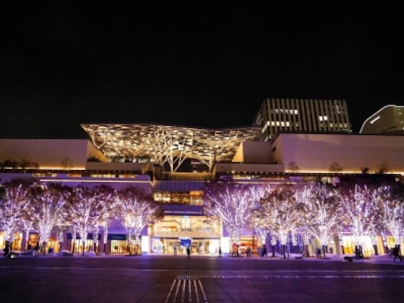 みなとみらいエリア最大級の規模となる「グランモール公園BrightIllumination2017-2018」(2017年11月7日撮影)