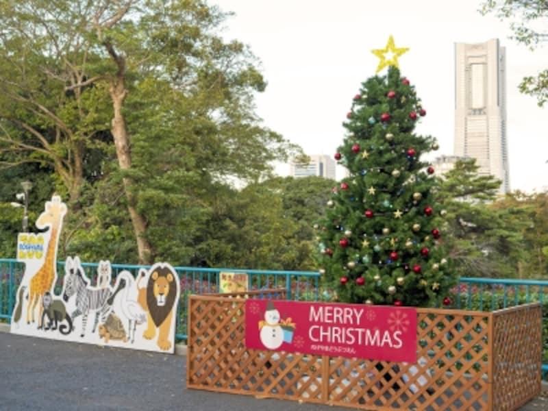 横浜ランドマークタワーをバックに撮影できる、野毛山動物園のツリー(2017年11月12日撮影)