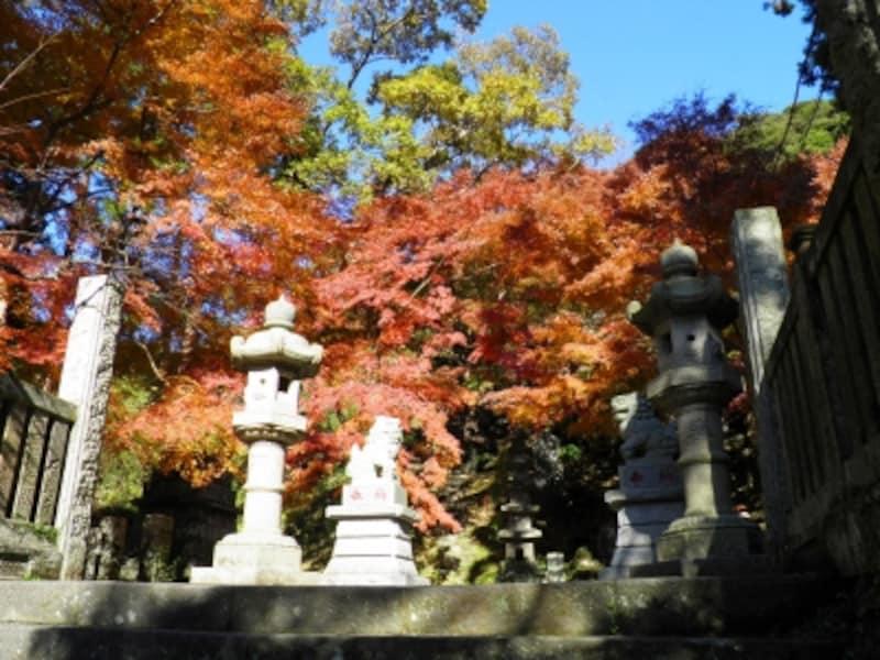 紅葉が美しく彩る半僧坊への石段