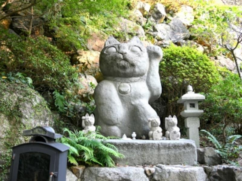 徳島,お松大権現,猫の大仏