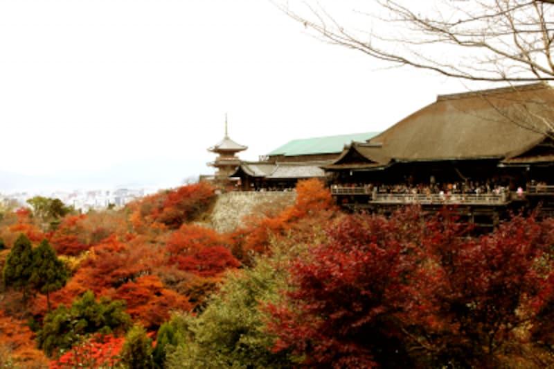 京都、一人旅、初心者、おすすめ