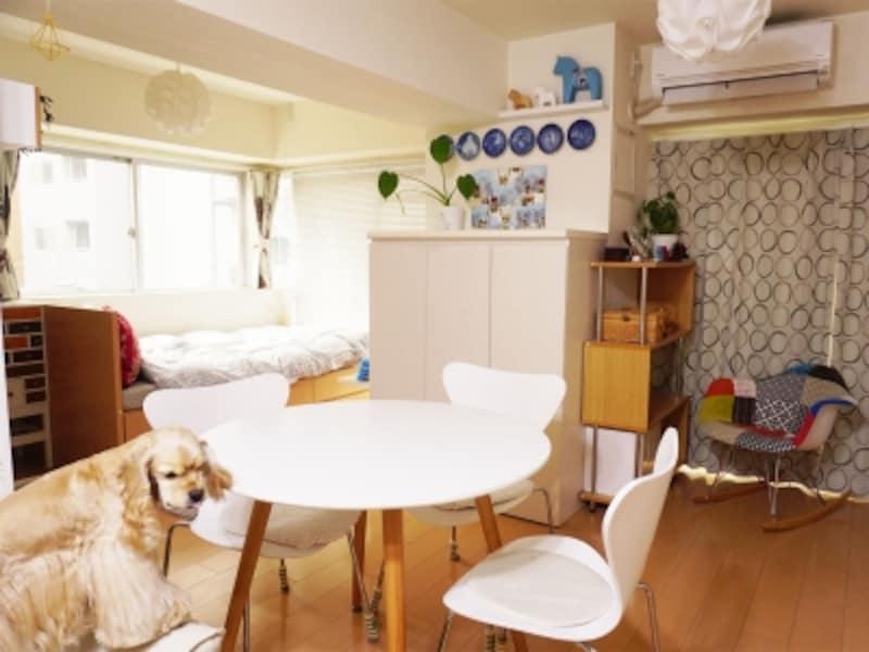 愛犬ジャスミンとの一人+一匹の暮らしを楽しむ女性の部屋を紹介します