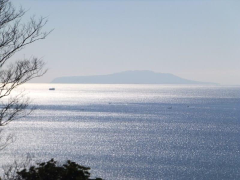 吾妻山公園(3)/伊豆大島を望む