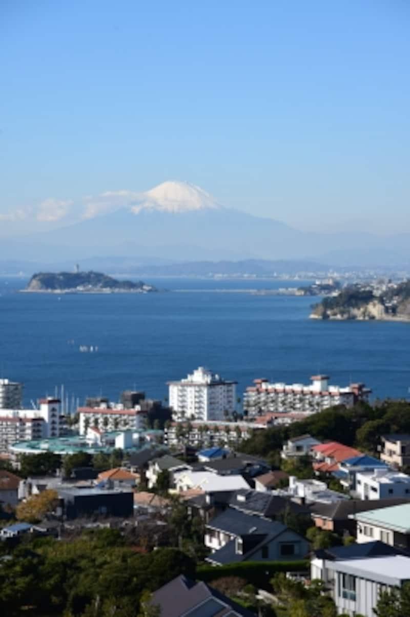披露山公園展望台からの眺望。逗子マリーナ、海、富士山が一望の下に。