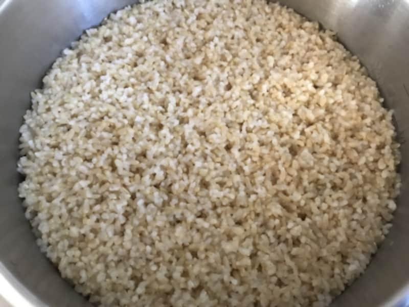 玄米がいい感じに炊けました。