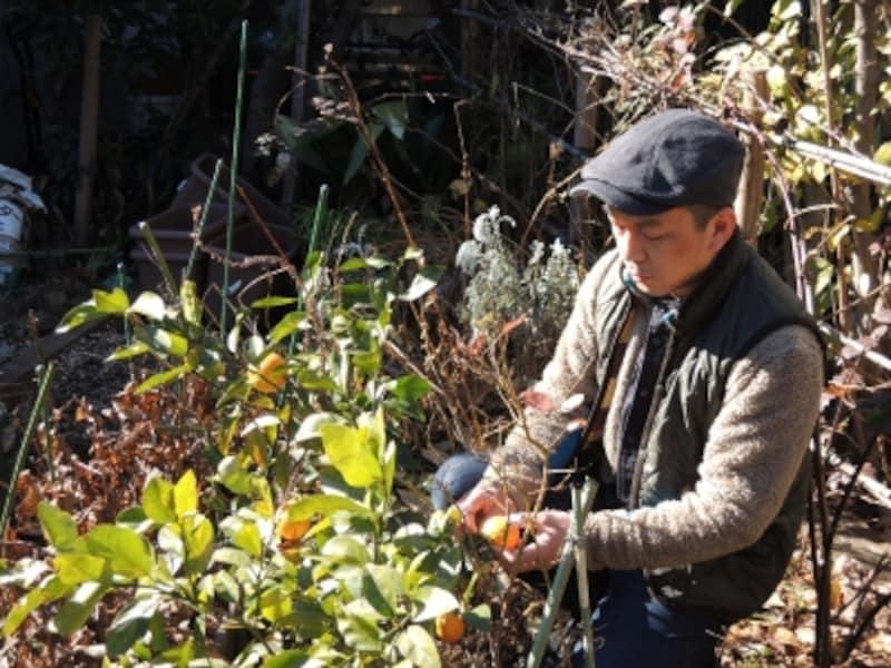 星野太郎さん。工房に面した菜園で。